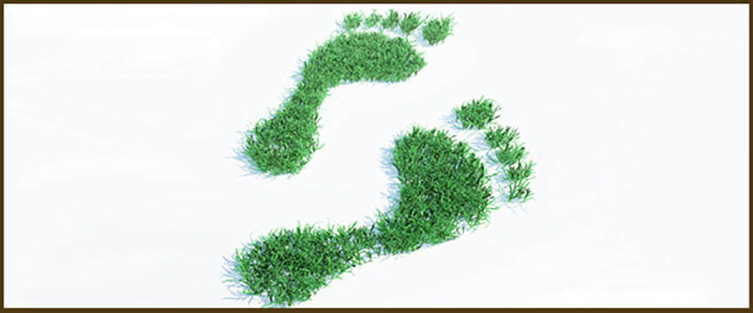 sustainable event management Sustainability services sustainable event management services we off er an array of solutions that can help your organization improve its sustainable event management and.
